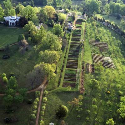 Monticello_gardens_2